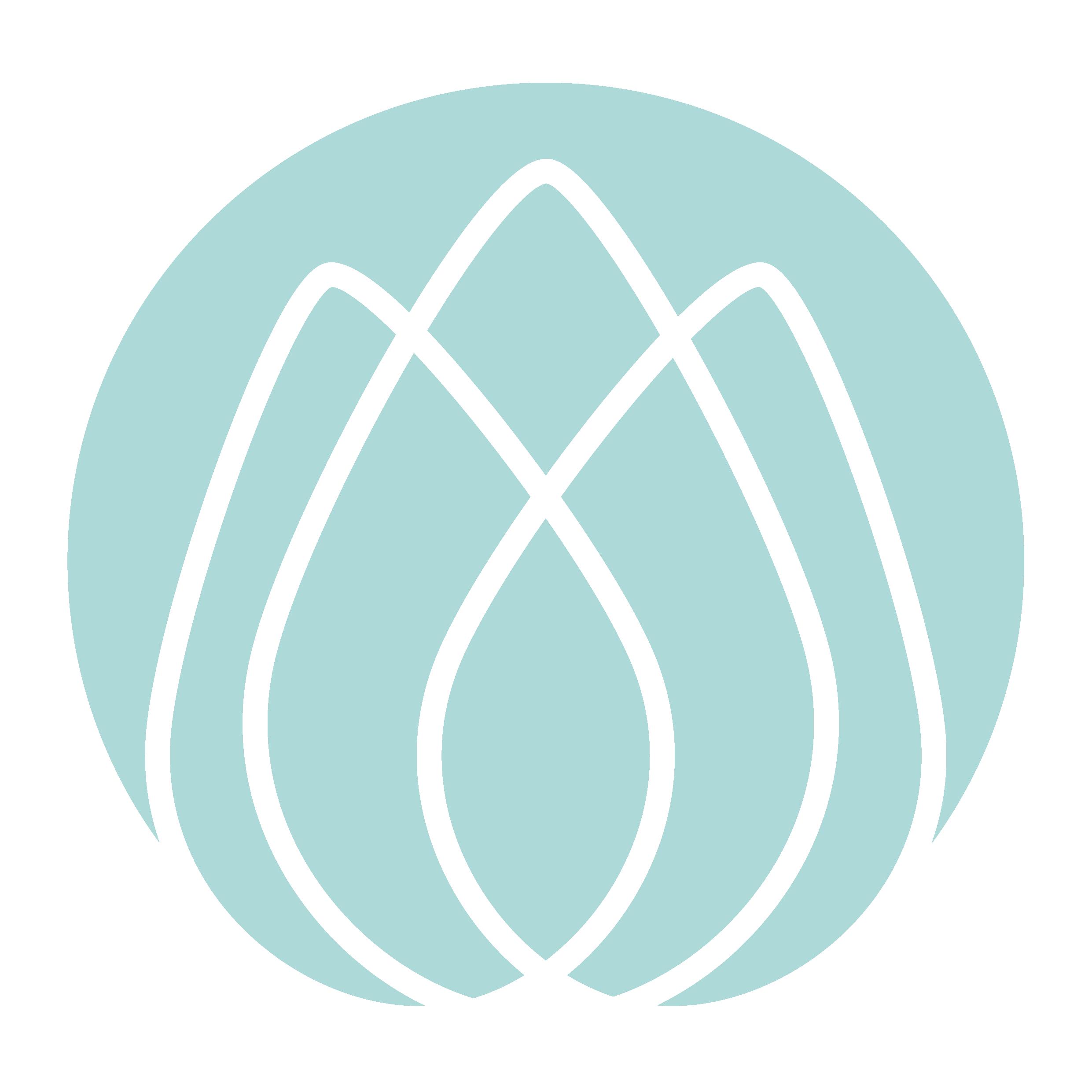 Devidevi_logo295